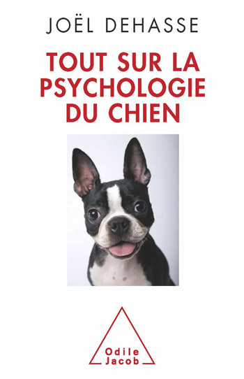 Everything About Dog Psychology