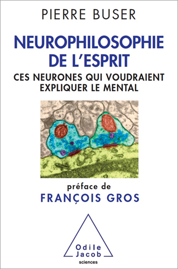 Neurophilosophy of the Brain - Neurons That Aspire to Explain the Mind