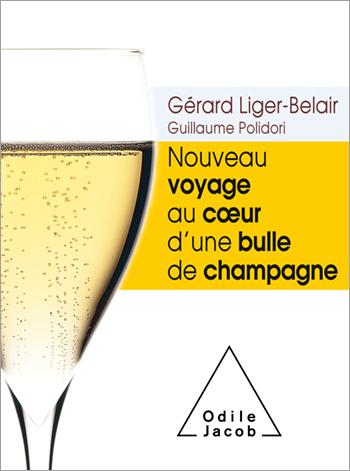 Nouveau voyage au cœur d'une bulle de champagne