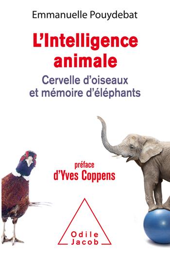 Intelligence animale (L') - Cervelle d'oiseaux et mémoire d'éléphants