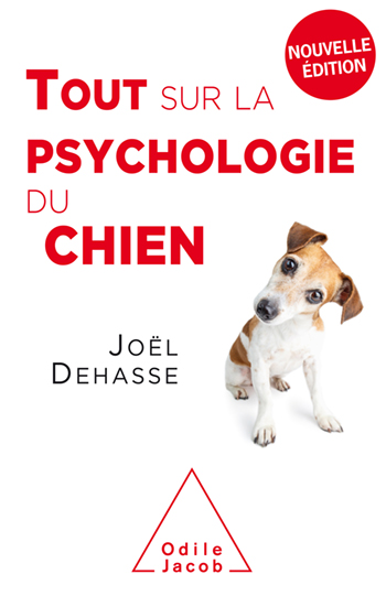 Everything You Need to Know About Dog Psychology